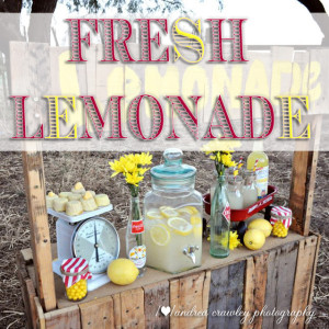 Andrea Crawleys Lemonade Stand r